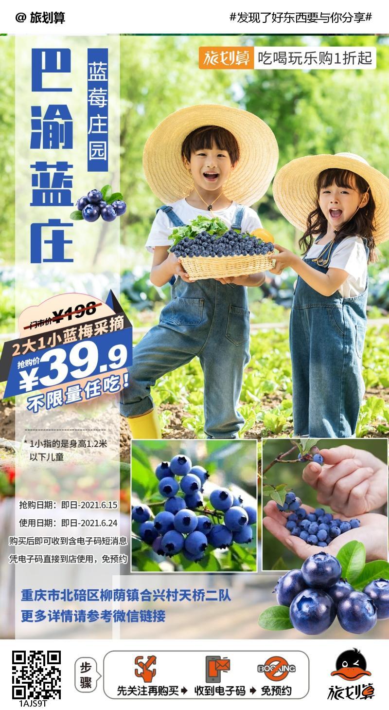 【北碚区|免预约】蓝莓采摘正当时,享受全新采摘体验!¥39.9抢价值198「巴渝蓝庄」2大1小蓝莓采摘随便吃!